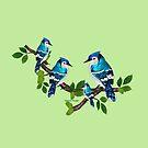 Blue jays (3711 views) by aldona