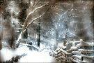 Winter Wonderland  by Elaine Manley