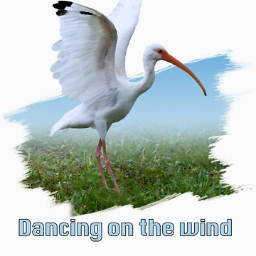 Ibis Dancing on the Wind T-Shirt by DeloresKnowles