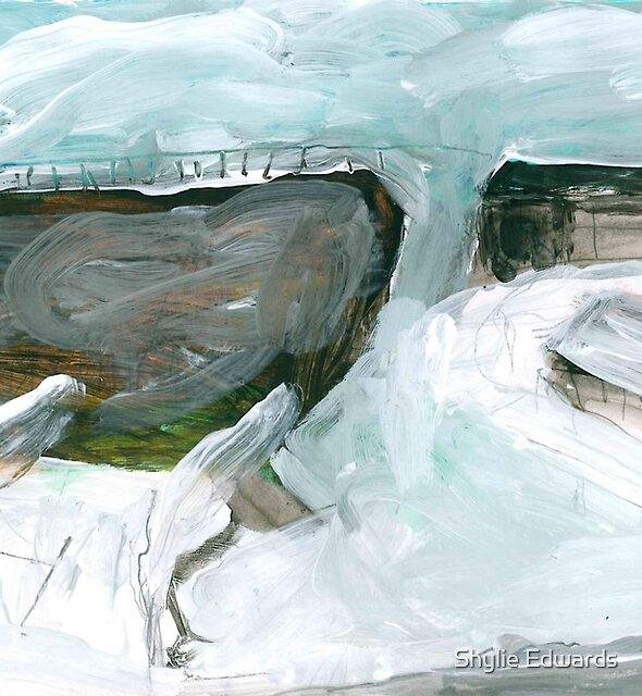 a cold day by Shylie Edwards