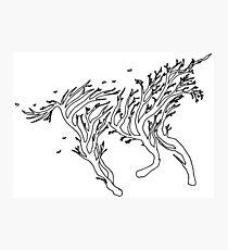 Surreal nature tree unicorn shape Photographic Print