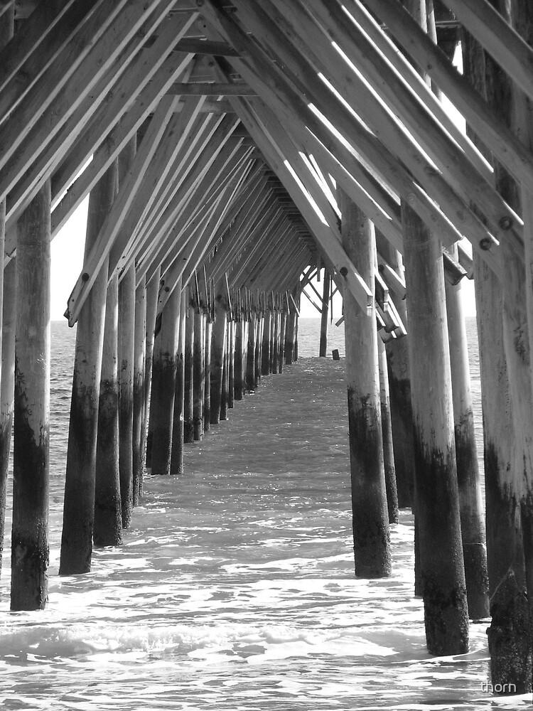 Under the Boardwalk by thorn
