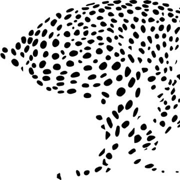 Acinonyx jubatus; cheetah chase; spots by hannahsmetana