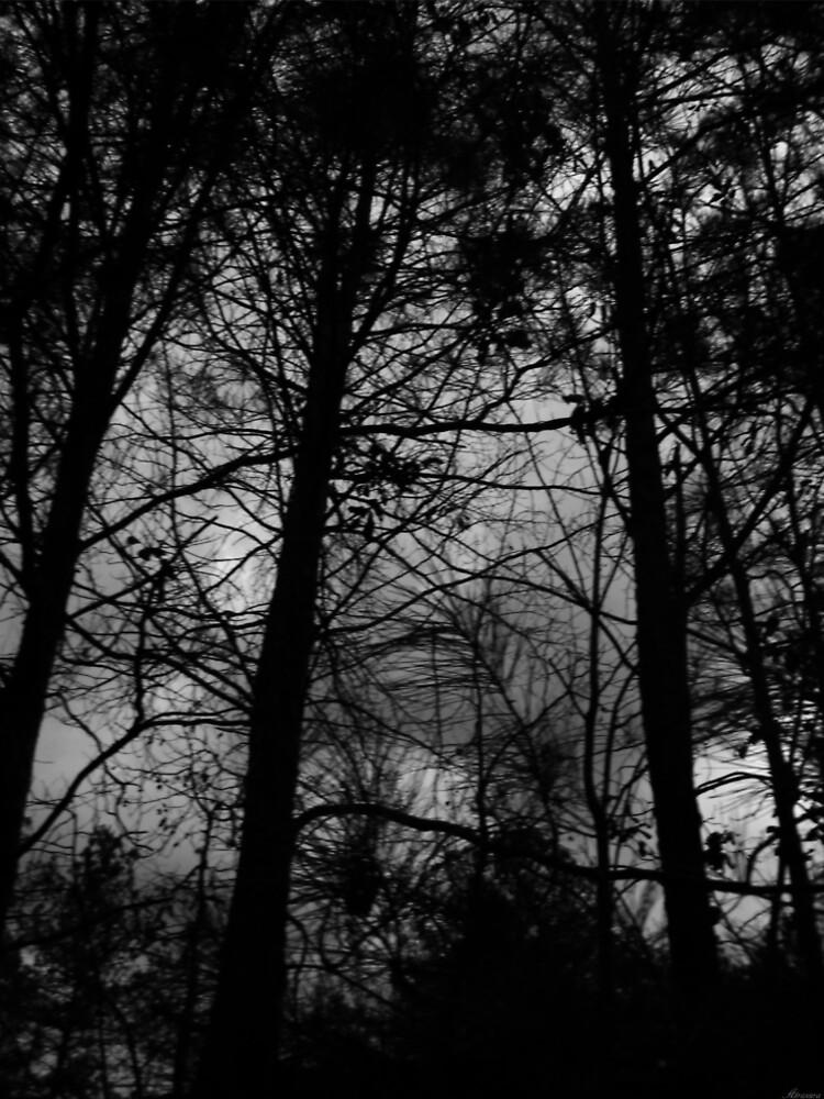 ... über eine dunklere Oktave der Existenz nachzudenken. ... von Atraxura