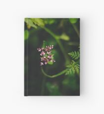 Jewel of the Forest Hardcover Journal