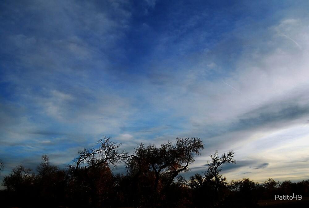 Cottonwood Skyline by Patito49