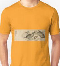 Hokusai Katsushika - Picture Of Koi Carp And Turtles Unisex T-Shirt