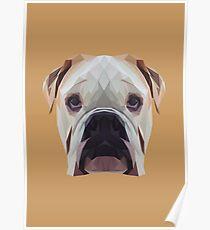 Bulldog low poly. Poster