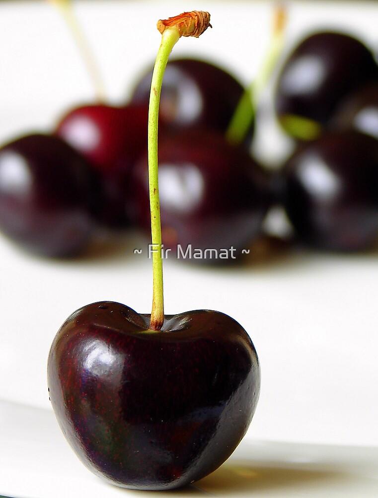 Black Beauty by ~ Fir Mamat ~