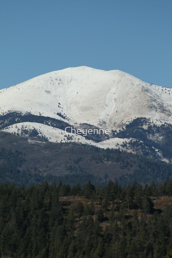 Mountain by Cheyenne