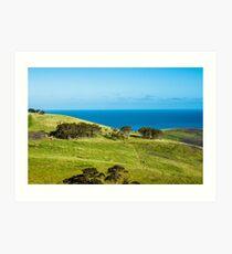 Myponga Kangaroo Views Art Print