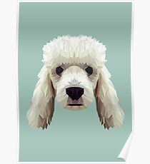 Poodle low poly. Poster