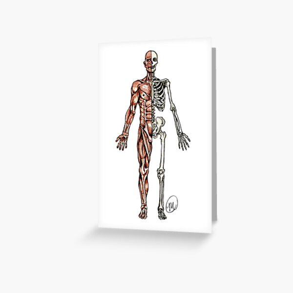 Half Muscle - Half Skeleton Greeting Card