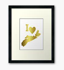 Gold Nova Scotia Framed Print