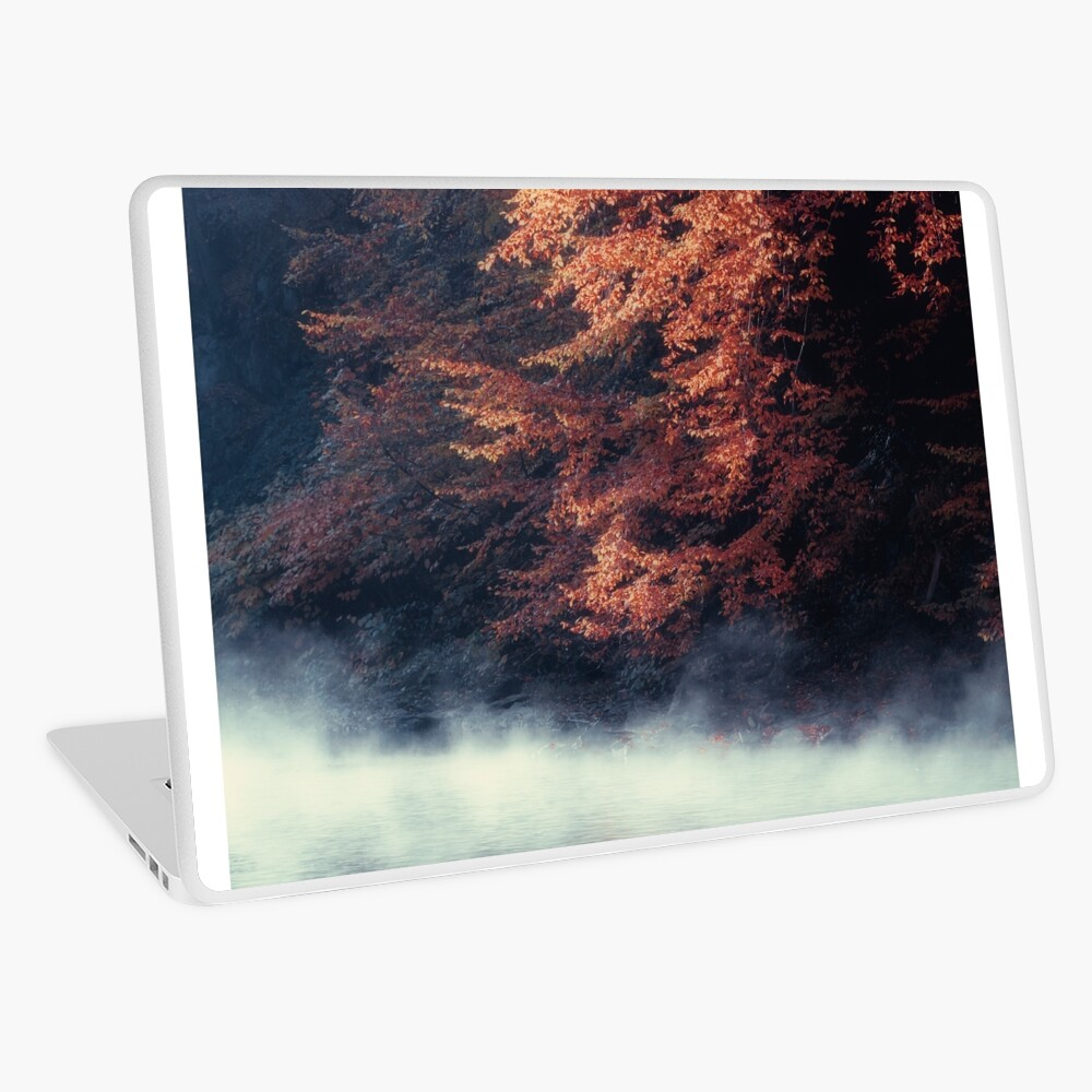 Nature*s Mirror - Fall at the River Laptop Skin