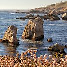 Sea Stacks at Soberanes by Yair Karelic