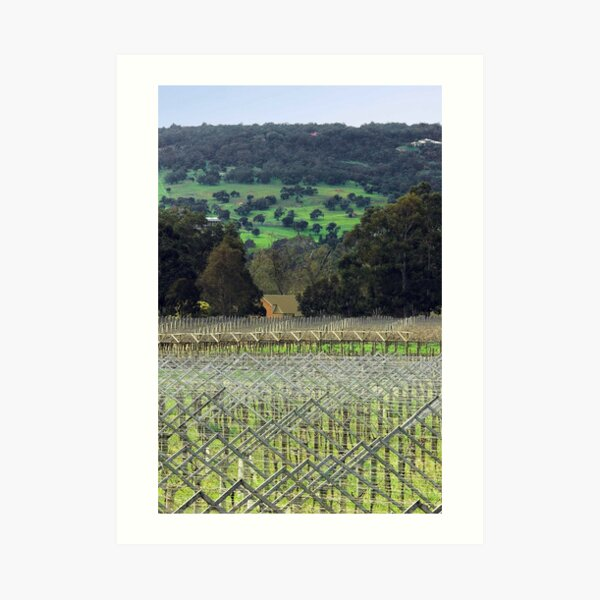 Swan Valley Winery Art Print