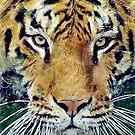 Tiger by Bakamuna