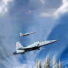 Winter flight by Bob Martin