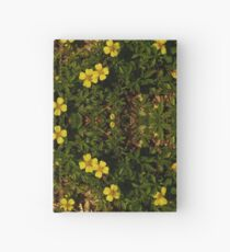 Tormentil in Shalwy Valley Hardcover Journal