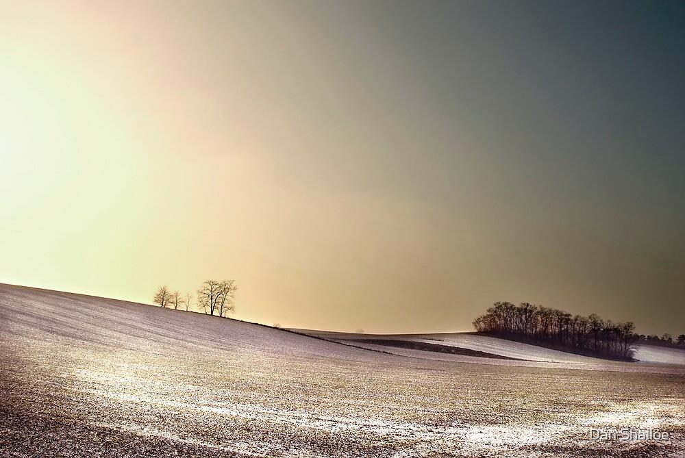 winter landscape by Dan Shalloe