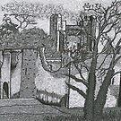 Adare Castle, Co. Limerick, Ireland by Ronan Crowley