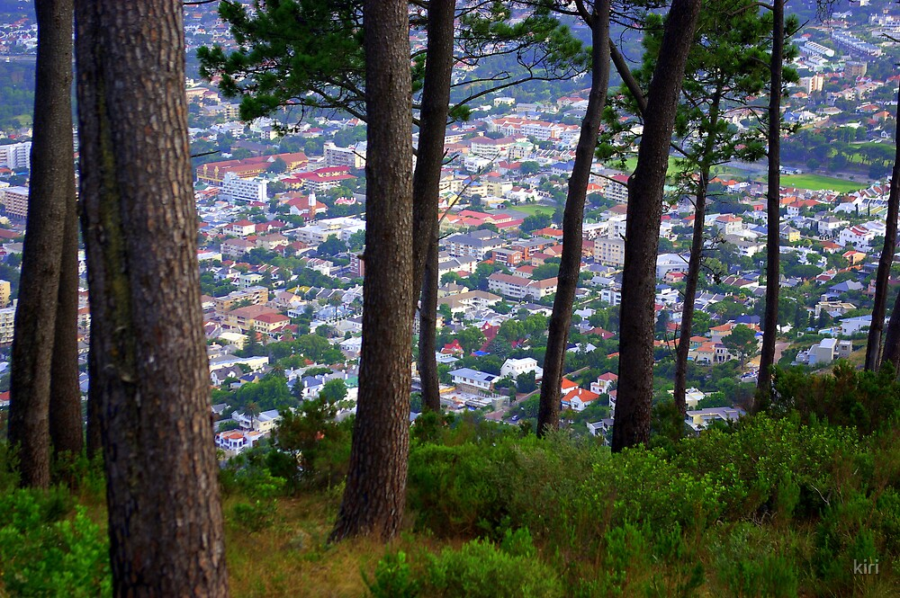 Cape Town from Signal Hill by kiri