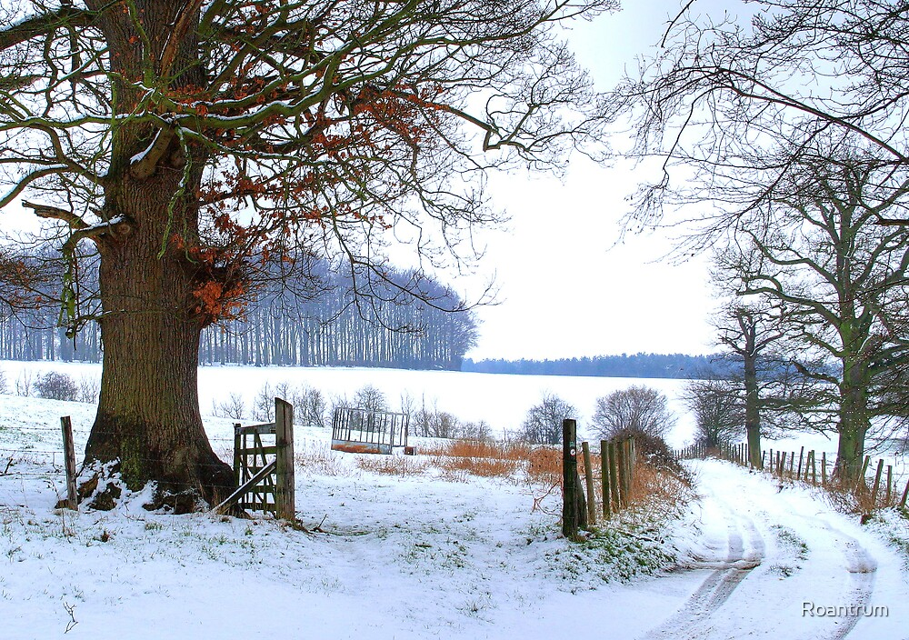 Bridleway with Snow by Roantrum