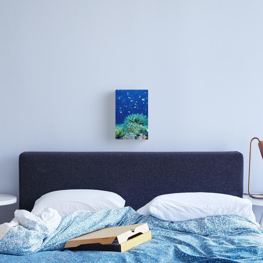 Coral reef scene Canvas Print
