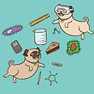 STEM Pugs by dcrownfield