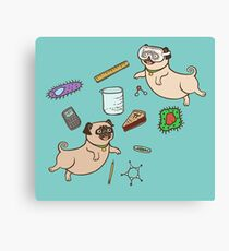 STEM Pugs Canvas Print