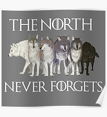 The north never forgets Poster