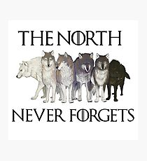 THE NORTH NEVER FORGETS Photographic Print