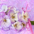 Ribboned Pansies  by Sandra Foster