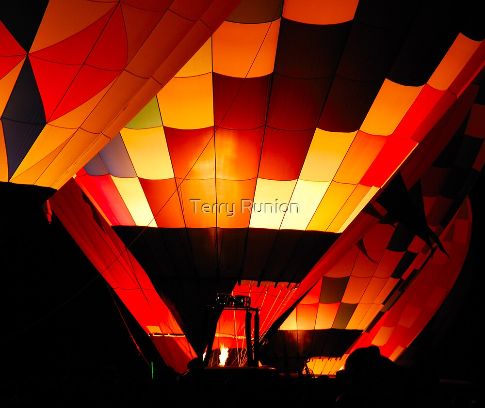 Hot Air balloons by Terry Runion