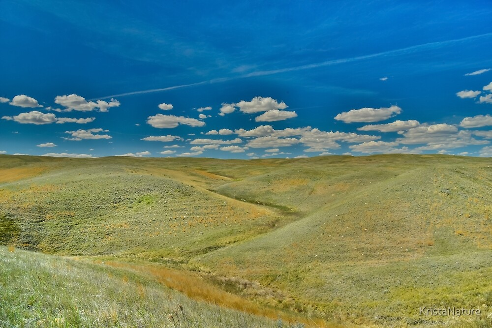 Grasslands Hills by KristaNature