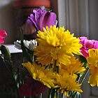 The Joy of Flowers on a Dull Day. by bgoddard