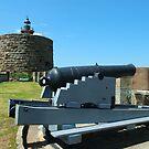 Cannon & Fort Denison by Gino Iori
