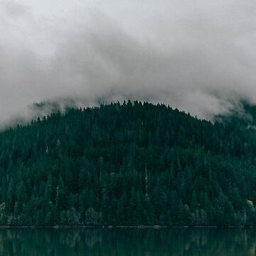 Pacific Northwest Lake by adventurlings