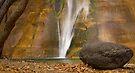 Lower Calf Creek Falls, Utah by Tamas Bakos