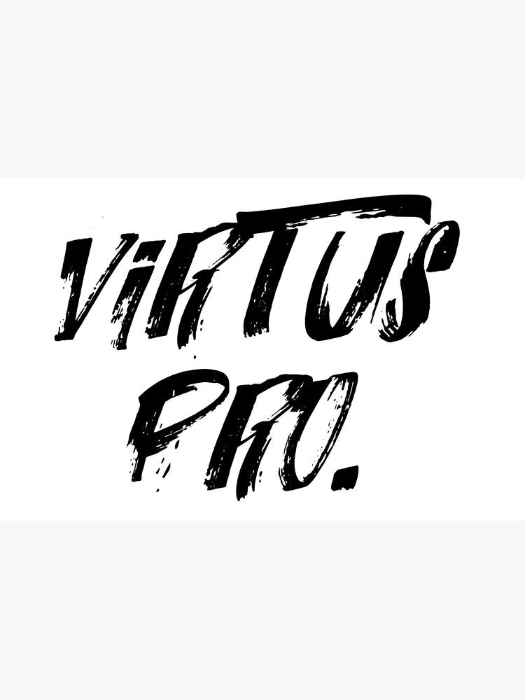VIRTUS PRO CS:GO LOL DOTA2 | Laptop Skin