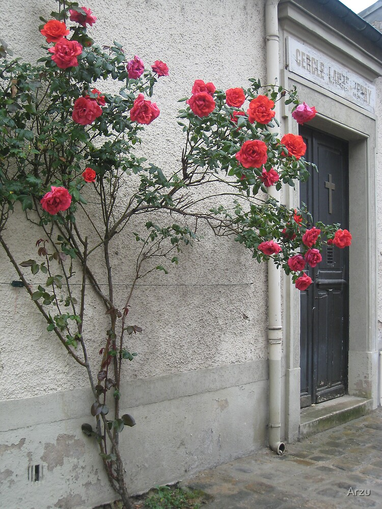 Greeted with Roses by Arzu