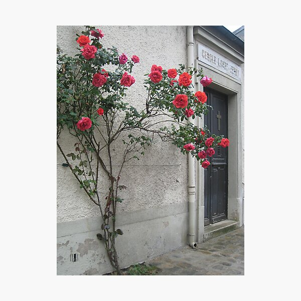 Greeted with Roses Photographic Print