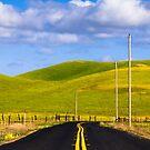 Road  by Radek Hofman