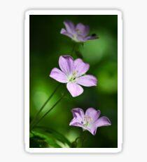 Geranium Flowers Sticker