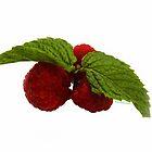 Three Berries + Two Leaves!! by Heather Friedman