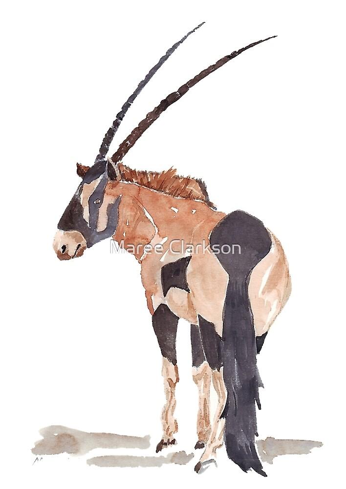 Gemsbuck (Oryx gazella) by Maree Clarkson