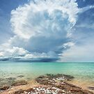 Crazy Stormcloud by Mieke Boynton