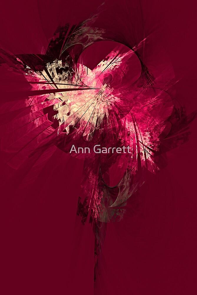 Fan Dancer by Ann Garrett