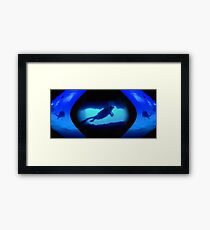 For Those Who Dive Framed Print